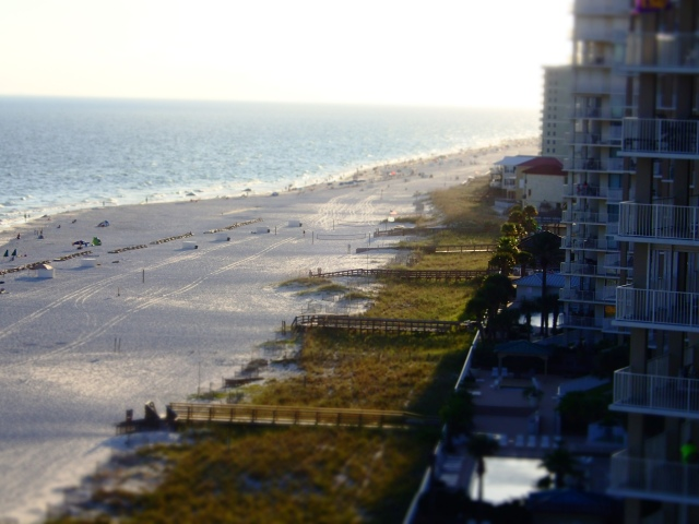 gulf condo shoreline, orange beach, alabama, the greener bench blog