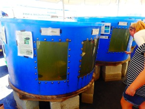 Circular blue holding tanks at MarineQuest, St Petersburg, Florida, the greener bench blog